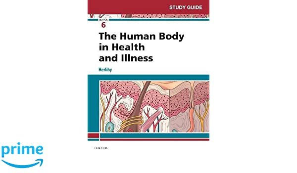 study guide for the human body in health and illness 6e amazon co rh amazon co uk Anatomy Tissue Study Guide Anatomy Muscles Study Guide