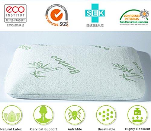 Hai Pai 2017nueva lujo aanti-mite anti-ronquidos antialérgico sueño profundo almohadas incluye Fundas de almohada de alto lujo de látex natural, Bamboo green, 60cm x 40cm x7cm