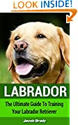 #3: Labrador: The Ultimate Guide for Training Your Labrador Retriever (Dog Training, Labrador Puppy, Guide Dog)