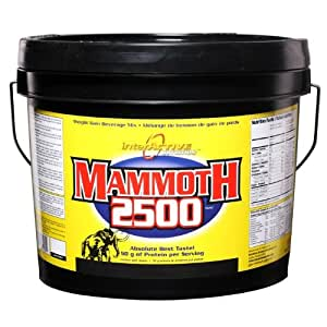 Intreactive Mammoth 4.4 Kg,Chocolate Flavour