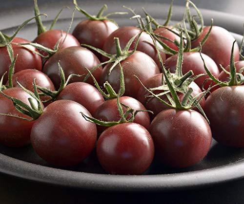 Bobby-Seeds BIO-Tomatensamen Black Cherry Sortenrar. Portion