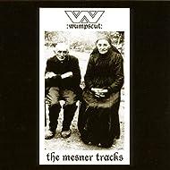 The Mesner Tracks