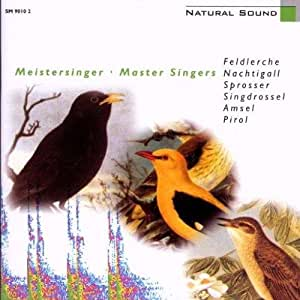 Natural Sound - Digitale Hörbilder - Meistersinger