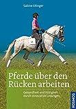 Pferde über den Rücken arbeiten: Gesundheit und Rittigkeit durch innovative Trainingsmethoden