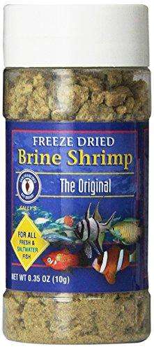 San Francisco Bay Brand ASF71104 Gefriergetrocknete Salzgarnelen für Süß- und Salzwasserfische, 10 g -