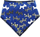 Spoilt Rotten Pets Personalised Designer Royal Blue Scottie Dog Bandana - Size 2 - Fantastic Quality Adjustable Design - For Small To Medium Breeds Of Dog
