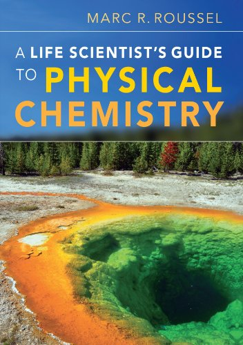 A Life Scientist's Guide to Physical Chemistry Paperback