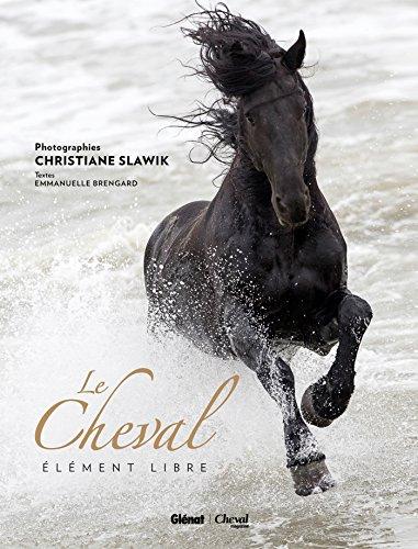 Cheval: Élément libre par Emmanuelle Brengard