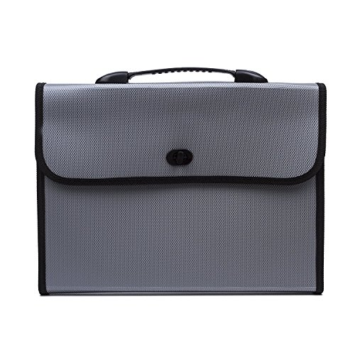 expandable-portable-hand-held-accordion-file-document-folder-file-organizer-with-buckle-a4-and-lette