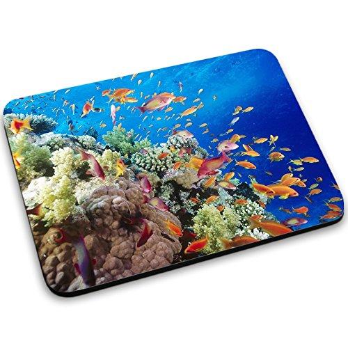 vida-marina-10045-designer-alfombrilla-de-ratn-mouse-mouse-pad-con-diseo-colorido-tamao-250-x-190-mm