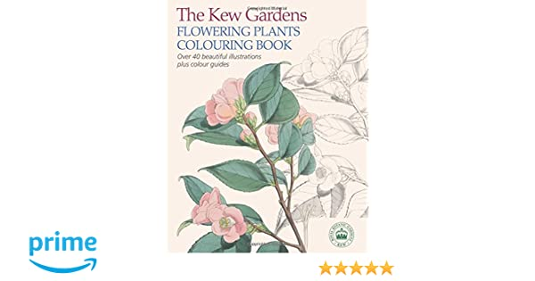 The Kew Gardens Flowering Plants Colouring Book Over 40 Beautiful Illustrations Plus Colour Guides Amazonde Arcturus Publishing Fremdsprachige Bucher
