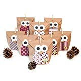 Pajoma, set per calendario dell'avvento fai da te con gufi, 1 x 24sacchetti da riempire, con adesivi natalizi