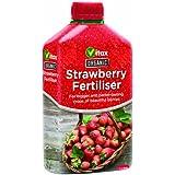 Vitax Ltd - Fertilizante orgánico líquido para fresas