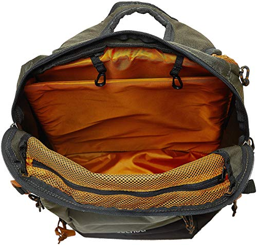 Best decathlon backpack in India 2020 Quechua 30 Ltrs Khaki Rucksack (8383598) Image 3