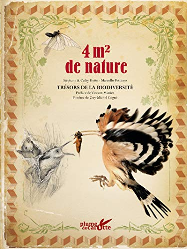 4m2 de nature par Stephane Hette