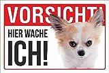 Schild Vorsicht Hier wache ich Langhaar Chihuahua Hund Geschenk 3 mm Alu-Verbund 300 x 200 mm