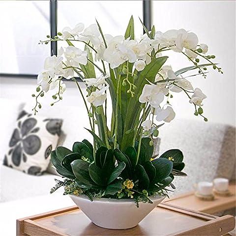 Fiori Artificiali Set per Hotel matrimonio decorazioni FESTE in casa?Emulazione Fiore Vaso Phalaenopsis Boutonniere Set, Bianco