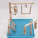 Myyxt Papageien Spielzeug Hölzerne Vogel-Leiter mit Glocken Übung Hängematte Swing kauen Accessoires