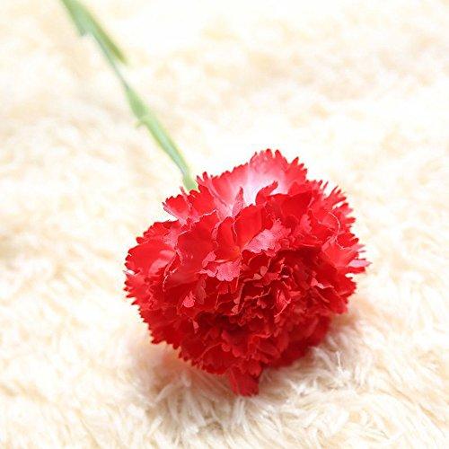QHJ Kunstblumen,Künstliche Kunstblumen Nelken Blumen Hochzeit Bouquet Party Home Decor Nelke Künstliche Blume Künstliche Blume (Rot) -
