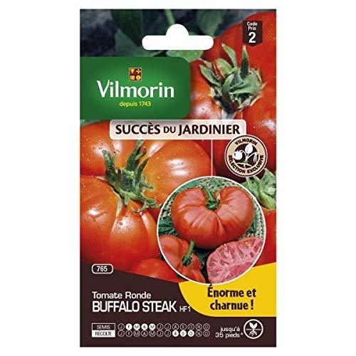 Vilmorin - sachet graines Tomate buffalo Steak HF1 vilmorin