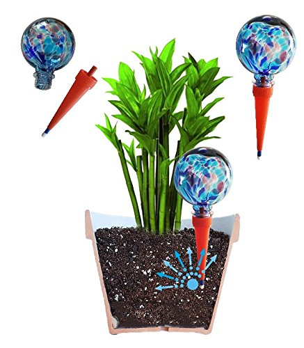 2große plantpal Deko Glas Bewässerung, Globes, Bewässerung für Pflanzen Spikes, aqua Spikes, automatische Bewässerung für Pflanzen, Urlaub Bewässerungssystem, dass funktioniert wirklich. Ideal für Haus Pflanzen. Verwendung in 17,8-25,4cm Innen Pflanztöpfe. Keine müssen Abfall Geld auf andere billige Globes. blau