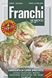 Salatsamen - Schnittzichorie Variegata Di Lusia Precoce von Franchi Sementi
