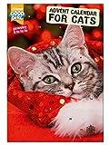 Good Girl Cat Advent Calendar