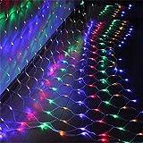 Road&Cool Rete di luci a LED Luce Netta Illuminazione Lampada Colorato Notte Stringa Fata Natale All'aperto Impermeabile Festa Stella Nozze Prato Parete Pesca Decorazione (3 * 3m)