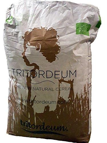 Tritordeum Vollkorn Mehl (2,5 Kg)