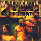 Songtexte von 2 Ton Predator - In the Shallow Waters