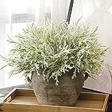 LFJIAH 1 Stück Herbst Winter Künstliche Blumen Weiße Pflanze Faux Laub Weihnachtsdekoration DIY Gefälschte Pflanzenblätter Für Zuhause Hochzeit Herbst Decor