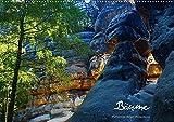 Bäume (Wandkalender 2020 DIN A2 quer): Impressionen aus dem deutschen Wald (Monatskalender, 14 Seiten ) (CALVENDO Natur) -