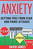 ANXIETY: Getting Free From Fear And Panic Attacks: Volume 1 (anxiety test, anxiety disorder, separation anxiety, generalized anxiety disorder, panic disorder, mood disorders, depression and)