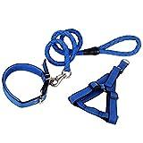 Xfay Hundesicherheitsgurt HX610 premium Hundegeschirr Set inklusive Geschirr Halsband Leine Einstellbare Dauerhaft für Kleine, Mittlere und Große Hunde-Größe L-3