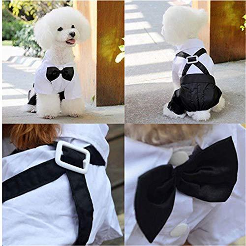 Haustier Hund Katze Kleidung Prinz Tuxedo Fliege Anzug Welpen Kostüm Overall Mantel S-XXL S 000 Jahre Tuxedo-overall