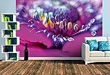 Premium Foto-Tapete Mohnblume (verschiedene Größen) (Size L   372 x 248 cm) Design-Tapete, Vlies-Tapete, Wand-Tapete, Wand-Dekoration, Photo-Tapete, Markenqualität von ERFURT