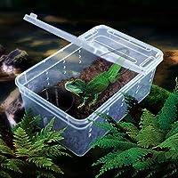 N/J Caja De Plástico Transparente De Insectos Reptiles Transporte Cría Alimento Vivo De Alimentación De La Caja (Color : Clear)