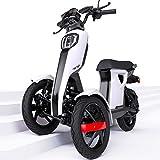 Neue iTango Innovative Design 3 Drei Räder Elektro Scooter USB Bluetooth App Dreirad bis 45km/h Weiß