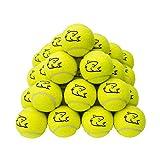 Shark Nueva 20x Top calidad amarillo pelotas de tenis ideal para fun–de tenis–de críquet Kids–perros