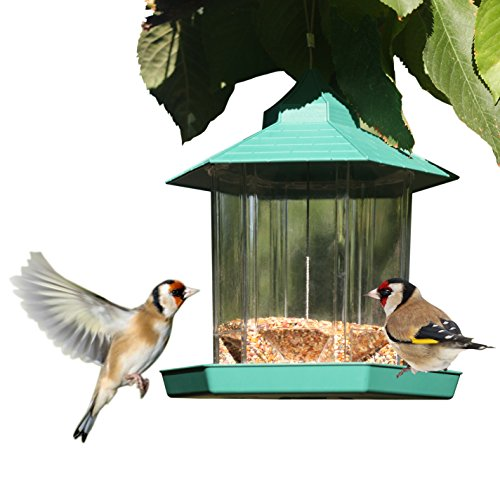 PetsN'all Hanging Gazebo WILD Bird Seed Feeder