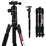"Best Digital Cameras Professional Dslrs - Camera Tripod, Beschoi 60"" Aluminum Protable Lightweight Travel Review"