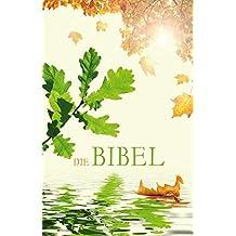 Die Bibel - Schlachter Version 2000: illustriertes Cover