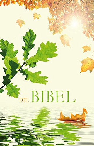 Die Bibel - Schlachter Version 2000: illustriertes Cover