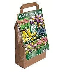 Idea Regalo - Greenbrokers Limited- Bulbi da fiore 6 varietà di fiori primaverili- Lotto di 101