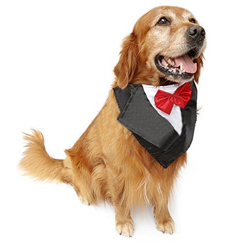DELIFUR Hochzeit Tuxedo Gro?er Hund Bandana Schal Verstellbare Katze Kragen Halstuch Pet Dress-up Kleidung f¨¹r Hochzeit oder Halloween - Pet-kleidung Bandana