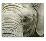 Jun XT Gaming Mousepad Portrait Of ein altes Elefant Bild-ID 4651802