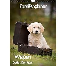 Familienplaner: Golden Retriever Welpen (Wandkalender 2018 DIN A4 hoch): Dieser Familienplaner mit 5 Spalten wird Ihnen jeden Monat erneut ein Lächeln ... (Familienplaner, 14 Seiten ) (CALVENDO Tiere)