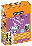 Cléopâtre - LCC19-150-E1 - Résine Crystal'Diamond - Coffret de Résine pour Verre crystal - 150 ml