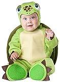 bébé garçons filles TORTUE ANIMAL MINI Beast World Livre jour semaine Costume de déguisement 6-24 mois - 18-24 months
