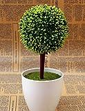 fiori artificiali, 10.4 'H Pastorale della sfera rotonda Plant in politene Vase , green+lime